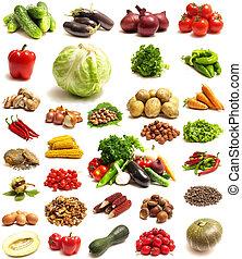 Vegetable - vegetable