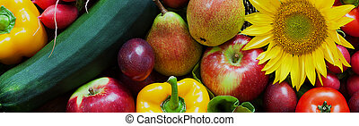 Basket full of fresh ripe vegetables and fruits