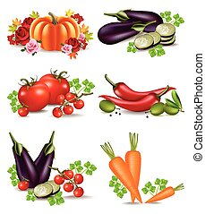 Vegetables autumn harvest set collection Vector. Realistic pumpkin, eggplant, carrots and tomatoes. Fall Season illustrations