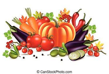 Vegetables autumn harvest Vector. Realistic pumpkin, eggplant and tomatoes. Fall Season illustration
