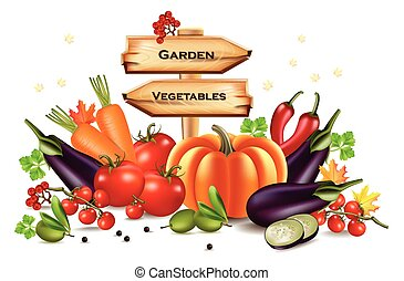 Vegetables autumn harvest with wooden sign. Place for text. Vector realistic pumpkin, eggplant and tomatoes. Fall Season illustration