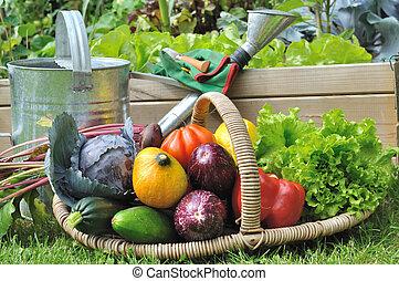 vegetables basket in garden