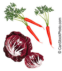 Vegetables - Clip-arts of red cabbage and carrots