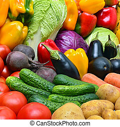 vegetables., colheita