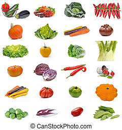 vegetables collection set