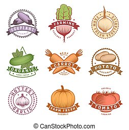 Vegetables Colorful Labels Set