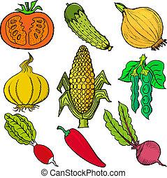 vegetables - Set of hand drawn, vector, cartoon illustration...