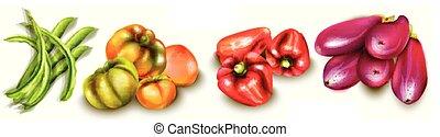 Vegetables eggplant, pepper, yellow tomatoes Vector watercolors