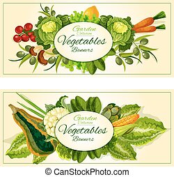 Vegetables, fruits and salad greens banners set
