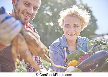 Vegetables has been harvested by couple