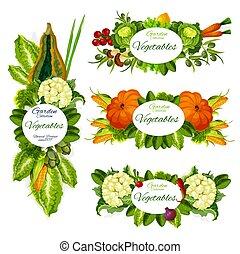 Vegetables, herbs, salad leaves, mushroom, olives
