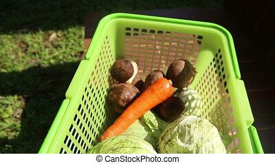 Vegetables in green basket