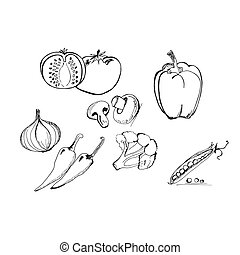 vegetables in sketch style, hand drawn vector illustration