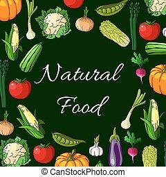 Vegetables. Natural food banner of vegetable icons
