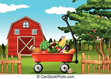 Vegetables on the farm