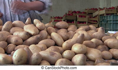 vegetables seller at the market in amman.