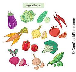 vegetables set detailed illustration