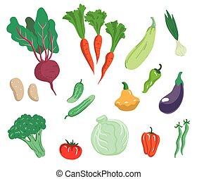 Vegetables. Set of simple color illustrations
