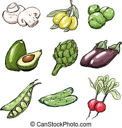 Vegetables set. Vector illustration