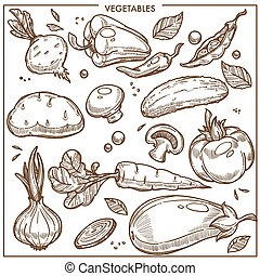 Vegetables sketch icons vector fresh organic vegetarian...