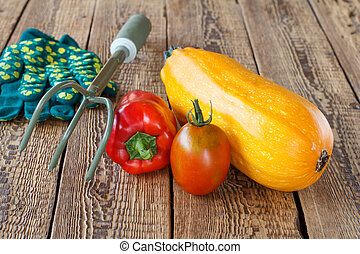 Vegetables with gloves and a rake on wooden background.