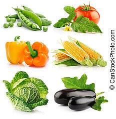 vegetal, blanco, conjunto, aislado, fruits