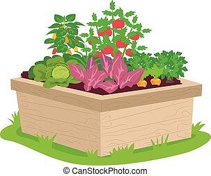 vegetal, caja, ilustración, contenedor