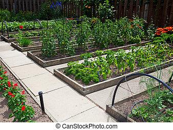 vegetal, camas, levantado, jardim