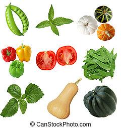 vegetal, conjunto