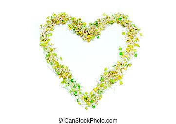 vegetal, corazón, verde