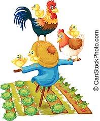 vegetal, espantalho, galinhas, jardim