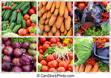 vegetal, fresco, colagem, variedade