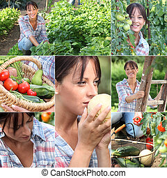 vegetal, mujer, jardín, mosaico