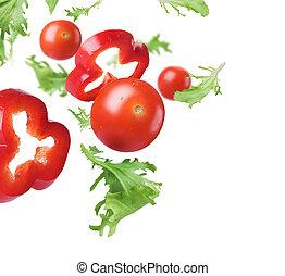 vegetal, salad., concepto, comida, sano