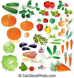 vegetales, aislado, colección