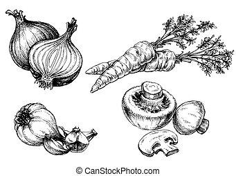 vegetales, colección, mano, dibujado, vendimia, estilo