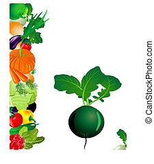 vegetales, rábano