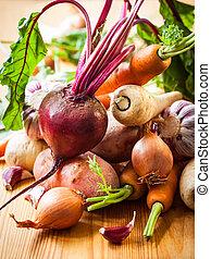 vegetales, raíz