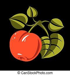 vegetarián, organický food, jednoduchý, ilustrace, vektor, zralý, pomeranč, donášet, s, mladický list, isolated., celek, ovoce, plodnost, pojem, symbol.