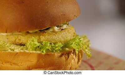 Vegetarian burger spins - Looks like vegetarian or fish...