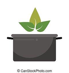 vegetarian food organic diet