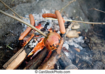 Vegetarian Wiener Roast - A vegetarian on a wiener roast -...