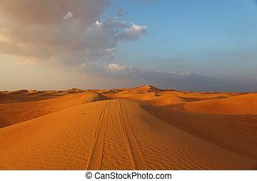 Vehicle Tracks On A Dune