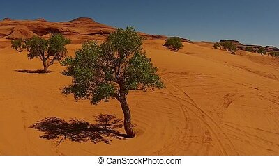 White Wash Sand Dunes Utah USA Aerial - Vehicle Tracks White...