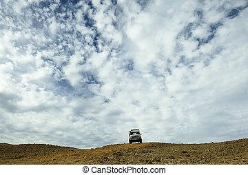 veicolo utilità sport, guida, in, il, deserto