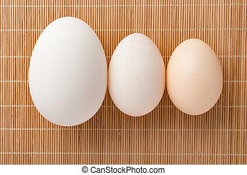 vejce, neobvyklý, seřadit se, formát