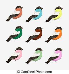 vektor, állhatatos, karikatúra, madarak
