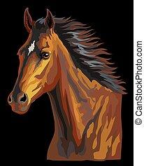 vektor, 23, bunte, pferd, porträt