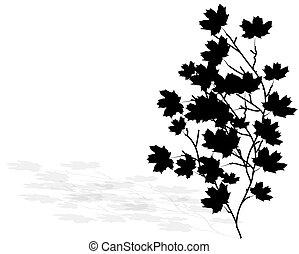 vektor, abbildung, von, a, zweig, mit, schwarz, blättert
