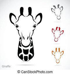 vektor, avbild, av, en, giraff, huvud
